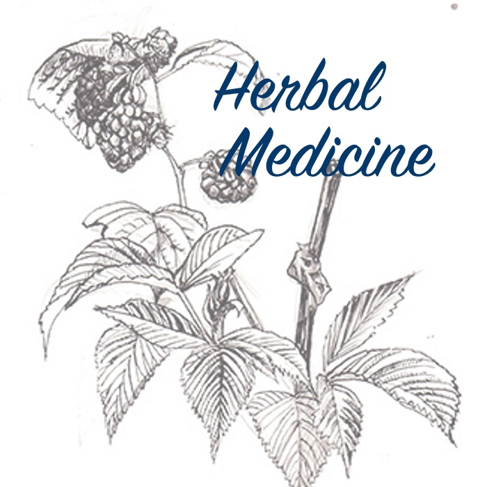 Herbal_V3