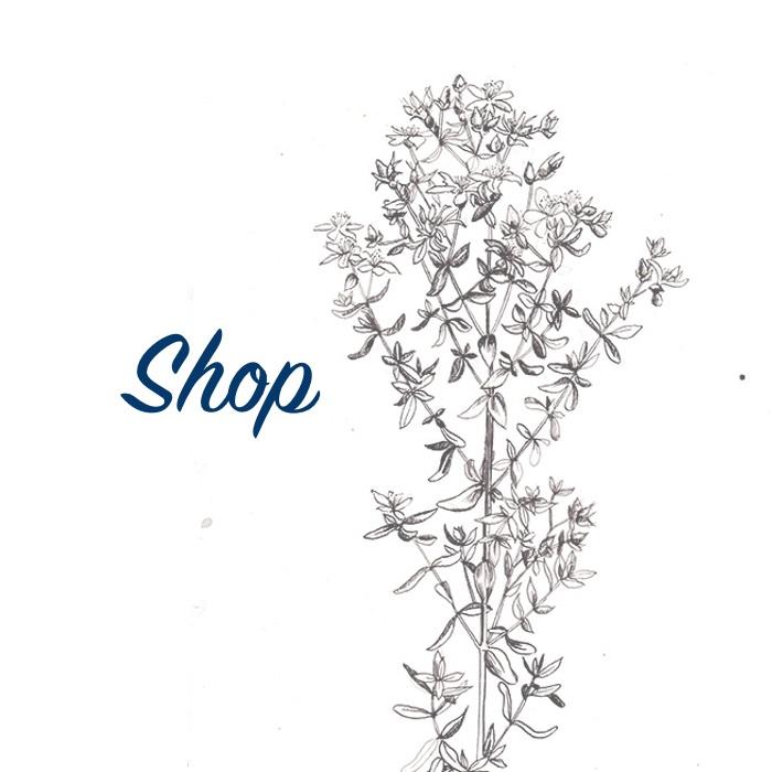 Shop_V3