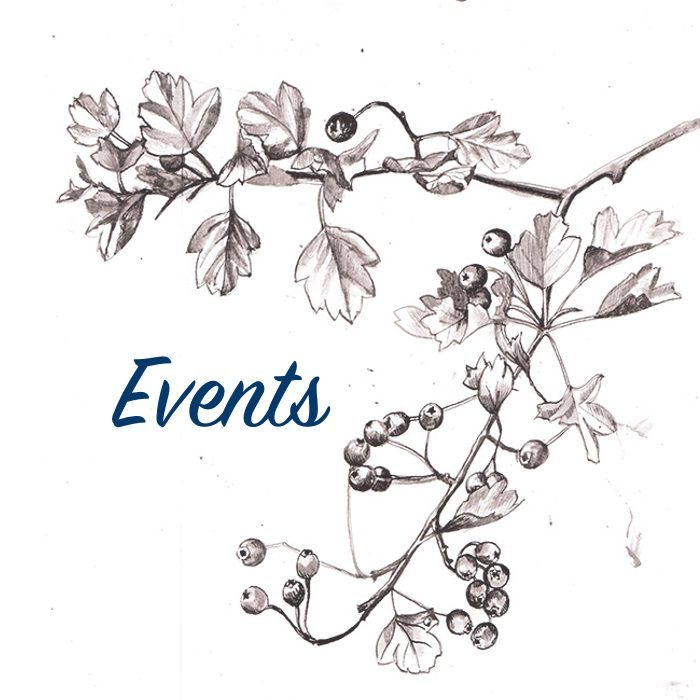 Events_V3